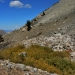 The scree slope where we saw our pika friends