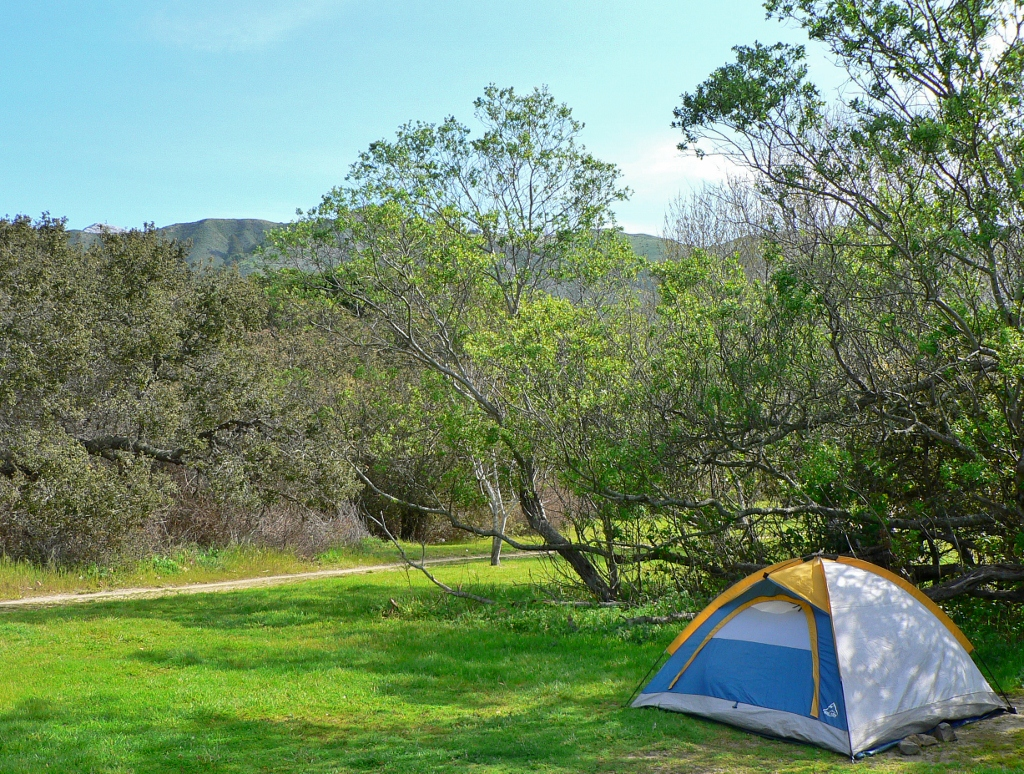 Camping Andrew Molera State Park In Big Sur Beaut Tree Net