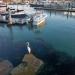 Walking down the Coast Guard pier