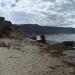 Andrew Molera state park beach