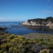 At Point Lobos State Reserve