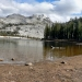 Sheep & Moby at Cathedral Lake