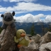 Obligatory Sheep and Moby picture from the peak\'s rockpile