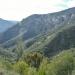 Old Yosemite Road down to El Portal