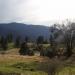 Mccauley Ranch