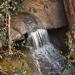 Small rapids in Crane Creek