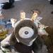 Too cute, Snuffles the bear as a giraffe
