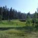 Hodgon Meadow