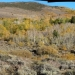 Panorama of Molybdenite Creek Canyon