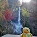 Moby at Latourell Falls