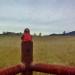 Foothill Veiws