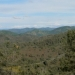 Red Hills Vista