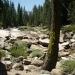 Back to illilouette Creek