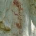 A complex pictoglyph