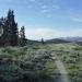 TRT near Camp Peak