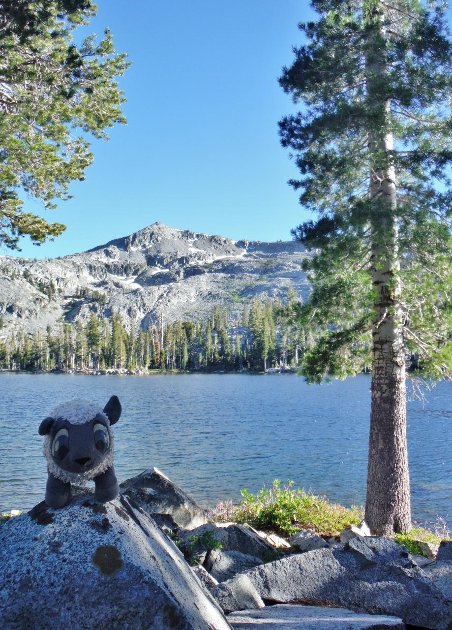 Tamarack Lake Tahoe Rim Trail Day 3 Beaut Tree Net