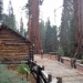 Soon to be relocated Mariposa Grove Museum