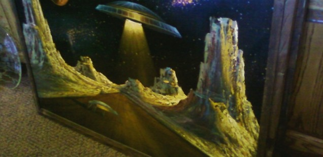For now, we have crappy phone pictures of sweet velvet space paintings
