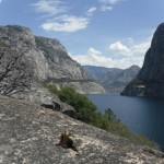 Hetch Hetchy Day Hike or as we like to call it Hetch Hedgehogy: the story of our water source and a brave hedgehog