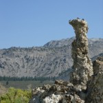 Enjoying the Tufa