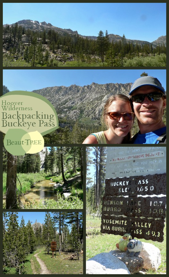 Backpacking the isolated Northeast corner of Yosemite, Via Buckeye and the Hoover Wilderness