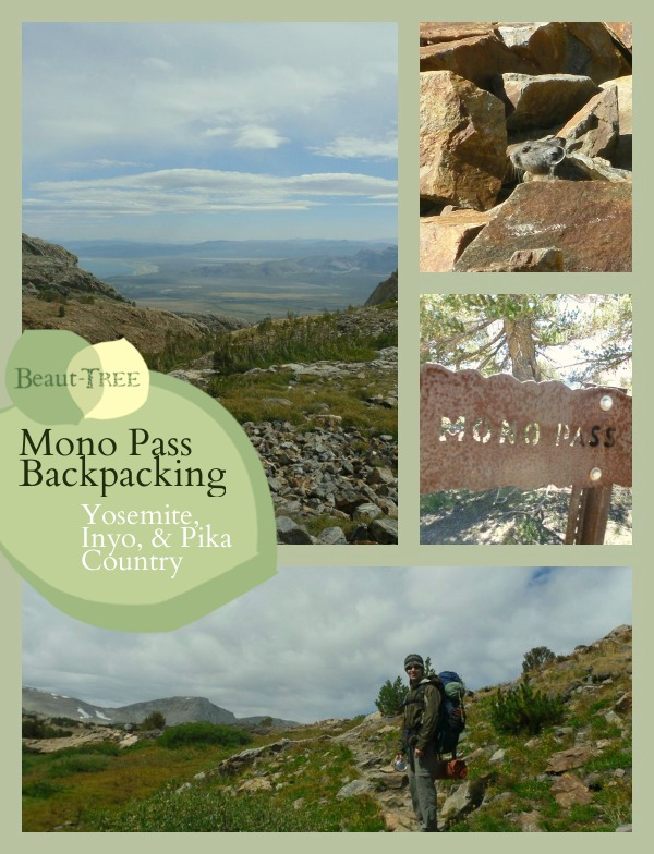 Mono Pass Backpacking