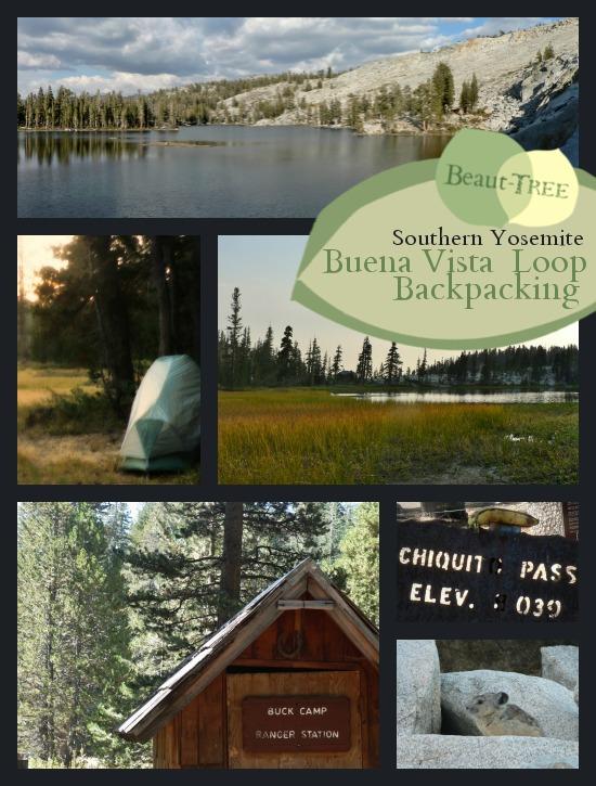 Backpacking Buena Vista Lake via Chiquito Pass, Southern Yosemite