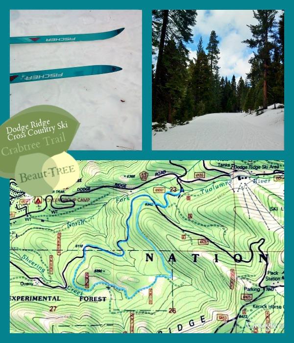 Crabtree Trail Cross Country Ski Dodge Ridge