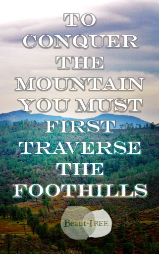 To Conquer the Mountain, You Must First Traverse the Foothills