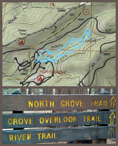 Big Trees North Grove Trail Map