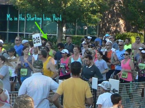 Start of Moo-nlight Half Marathon in Davis