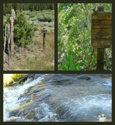 Hiking on the Buckeye Creek Trail