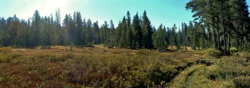 Buena Vista Pass, Yosemite