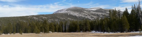Meadow view from Lyell Canyon, Yosemite