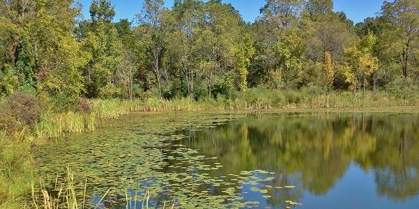 Big Seven Lake