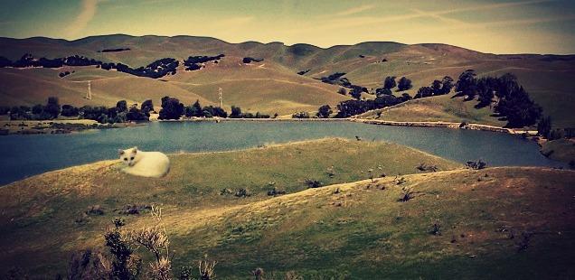 Lake Heman, Benicia CA