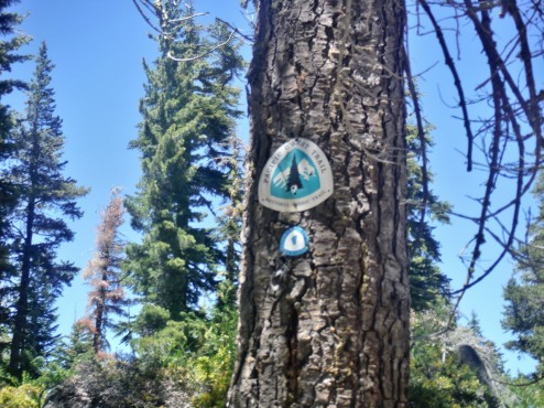 Big PCT sign, baby TRT sign