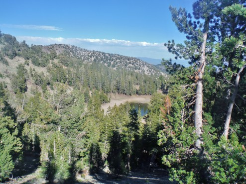 Mud Lake, a lonely water source on the Tahoe Rim Trail