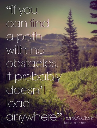 """If you can find a path with no obstacles, it probably doesn't lead anywhere.""  - Frank A. Clark"