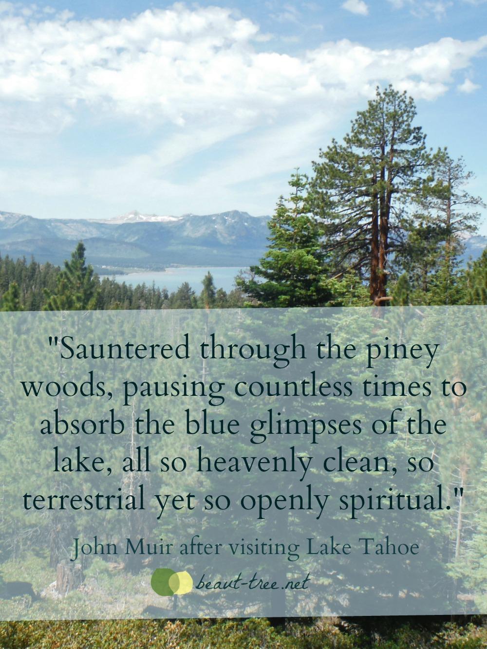 John Muir & Lake Tahoe