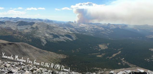 Meadow Fire Yosemite