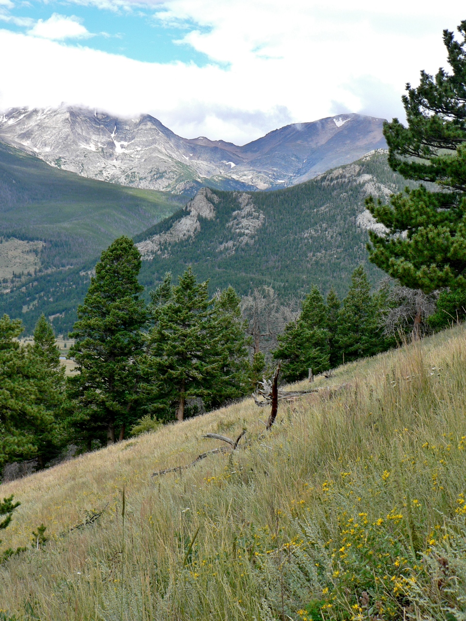 Trail up to Deer Mountain, RMNP