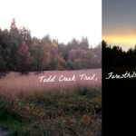 Todd Creek Trail, Foresthill CA