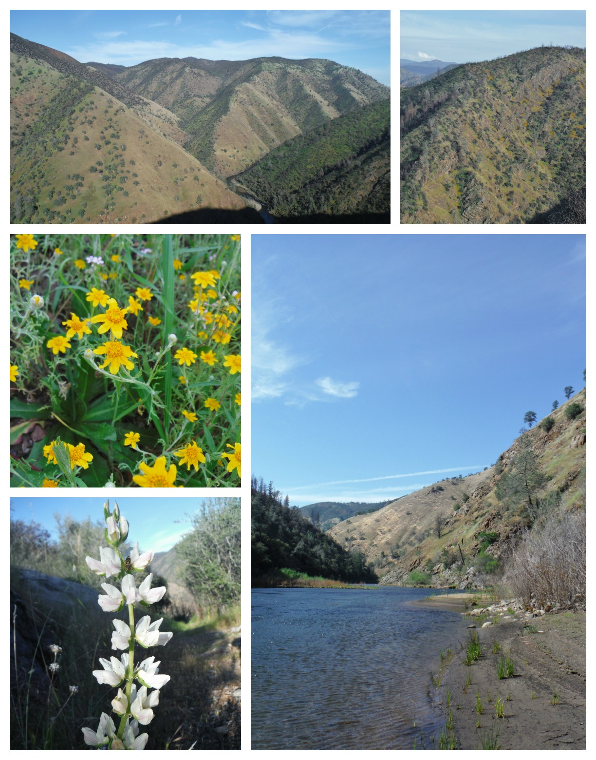 Groveland, CA hike to Tuolumne on Indian Creek Trail