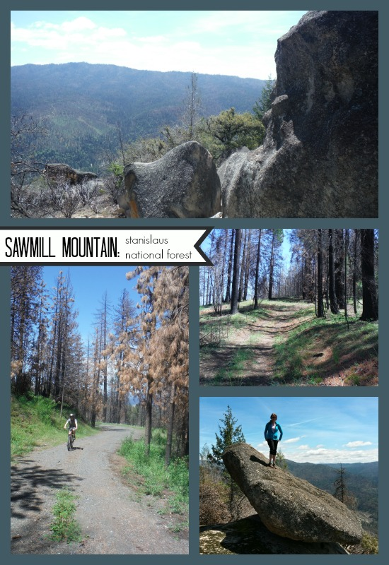 Sawmill Mountain, Stanislaus National Forest CA