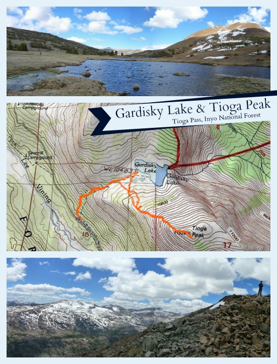 Gardisky Lake and Tioga Peak Topo Map