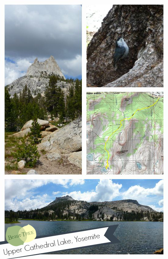 Day Hike to Upper Cathedral Lake, Yosemite