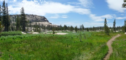 Emigrant Wilderness Trifecta: Burst Rock, Powell and Chewing