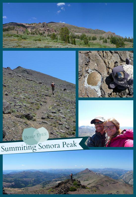 Sonora Peak Hike, Highway 108/Sonora Pass