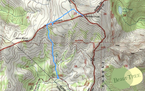 Sonora Peak Topographic HikeMap